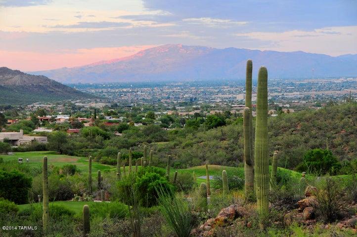 3362 W Lost Starr Place, Tucson, AZ 85745