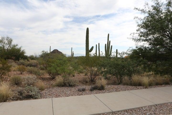 2079 S Little Dipper Drive, 55, Tucson, AZ 85745