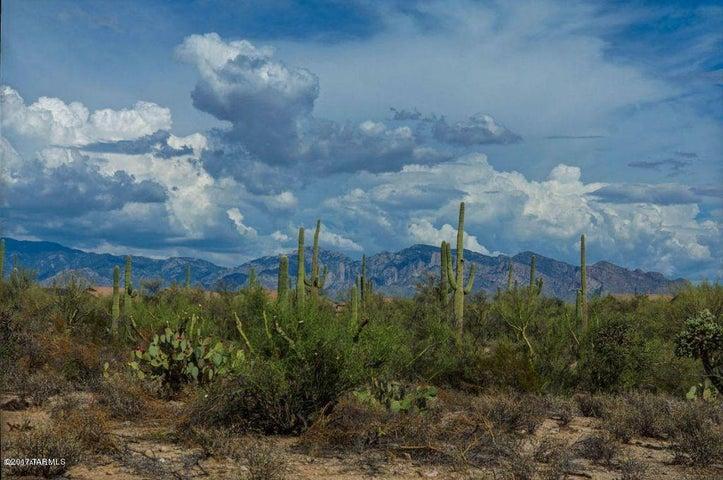 12316 N Fallen Shadows Drive, Marana, AZ 85658