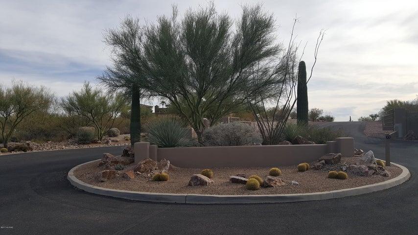 3958 S Saguaro Monument Place, 3, Tucson, AZ 85730