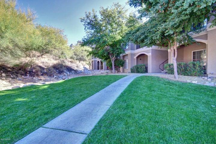 1500 E Pusch Wilderness Drive, 16203, Tucson, AZ 85737
