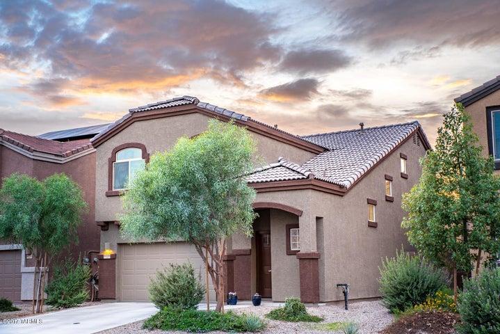 8739 N Black Pine Drive, Tucson, AZ 85743