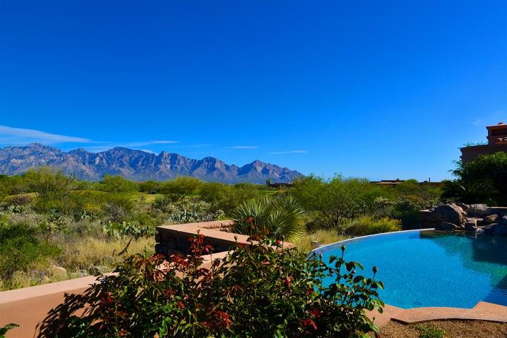 14262 N Giant Saguaro Place, Oro Valley, AZ 85755