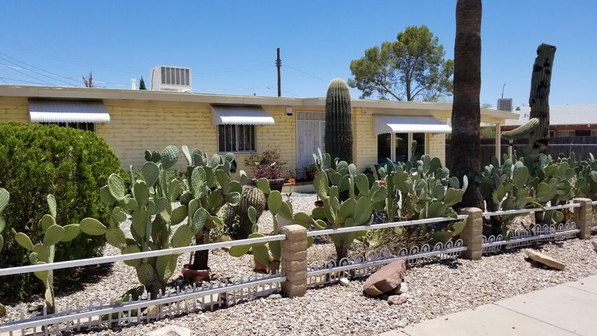 Low Maintenance, Beautiful front yard that your neighbors will envy