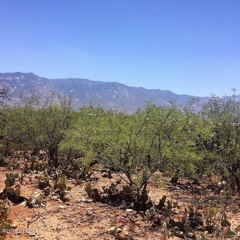 0000 E Pinal Street, Catalina, AZ 85739