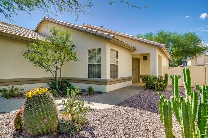 6982 W Amarante Drive, Tucson, AZ 85743