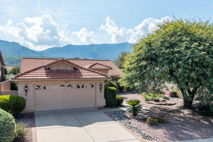 37975 S Mountain Site Drive, Tucson, AZ 85739