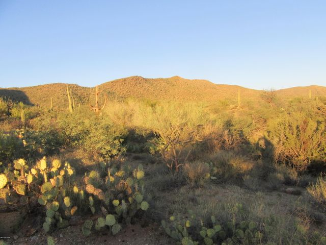 0 S Palo Verde Ranch Road, Catalina, AZ 85739