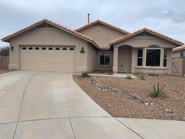 10226 E Buffaloberry Loop, Tucson, AZ 85748