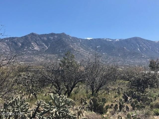 0000 Roadrunner, Catalina, AZ 85739