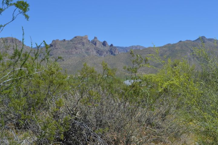 4580 N Bear Canyon Road, Tucson, AZ 85749
