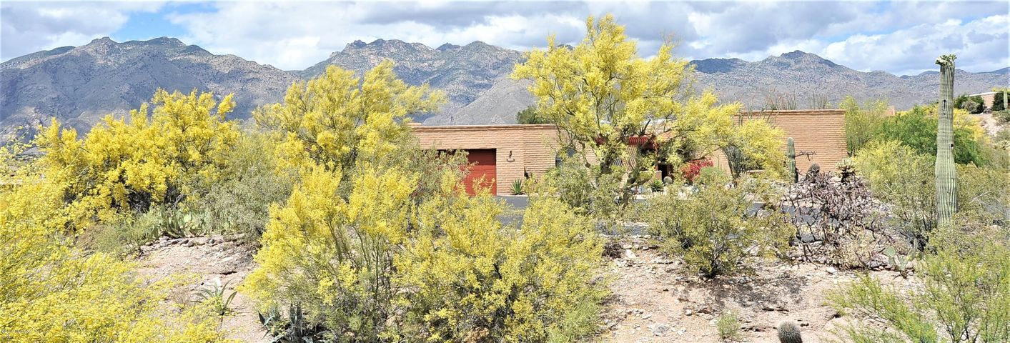 Looking North across your flowering palo verde trees to your new home in the Catalina Foothills.