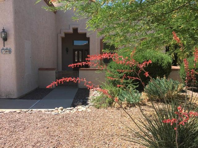 1393 W Cactus Bloom Way, Oro Valley, AZ 85737