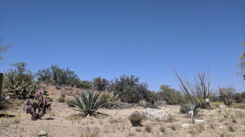 878 W Camino Encanto, 1, Green Valley, AZ 85622