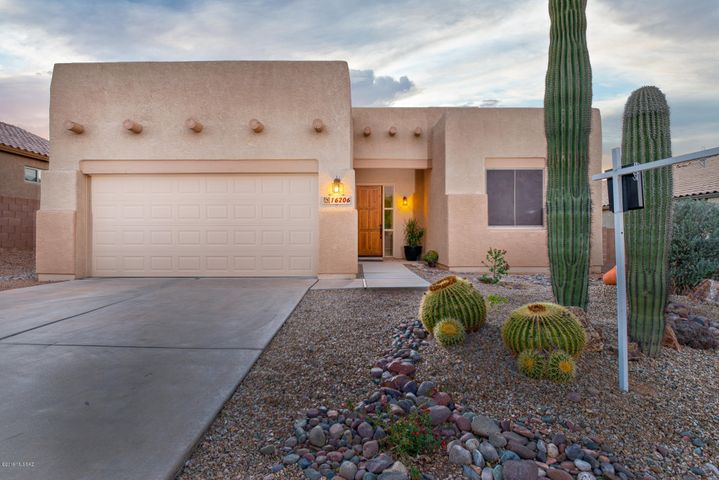 Saguaros in your front yard!