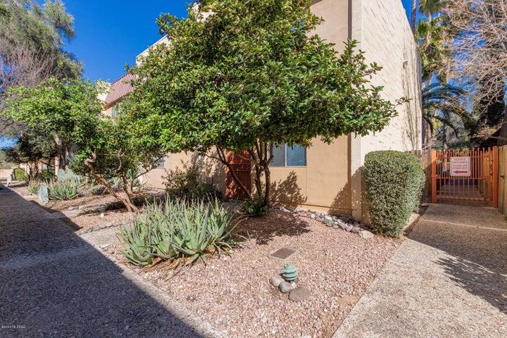 1343 E Fort Lowell Road, D, Tucson, AZ 85719