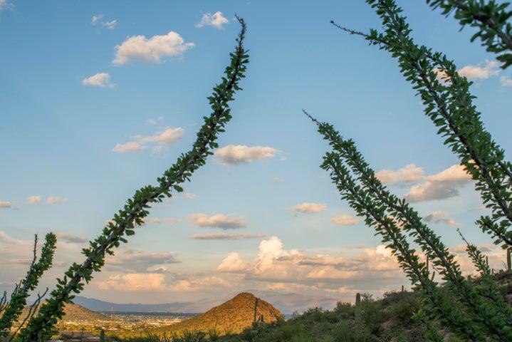 3340 W Big Dipper Drive, 50, Tucson, AZ 85745