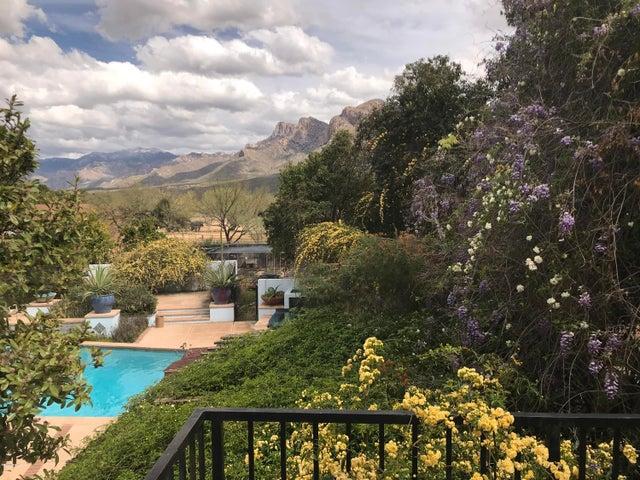 9250 N Calle Loma Linda, Tucson, AZ 85704