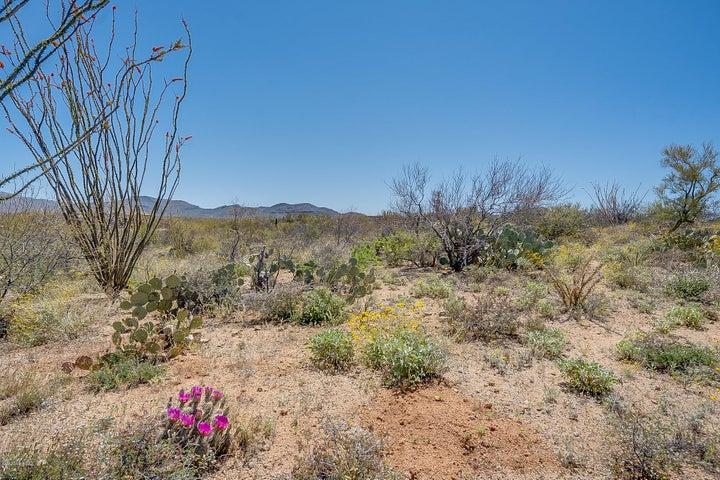 15510 E Tumbling Q Ranch Place, 154, Vail, AZ 85641