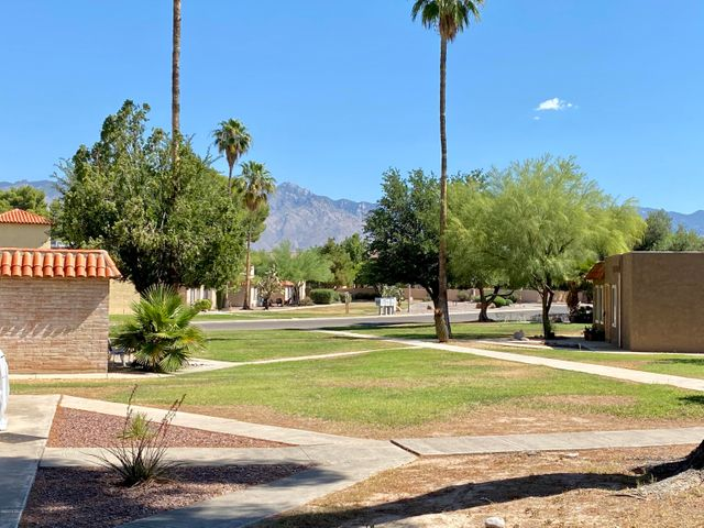 With Mature trees and shrubs and incredible views of the Catalinas!