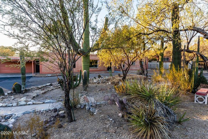 4441 N Bear Canyon Road, Tucson, AZ 85749