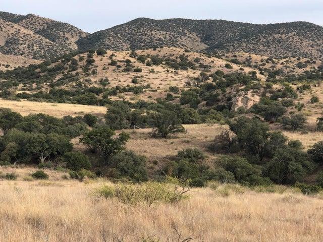 9800 N Bar Boot Ranch Road, Douglas, AZ 85607
