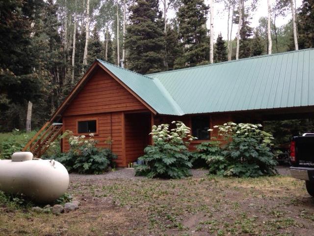 81 FOREST Lane, Placerville, CO 81430