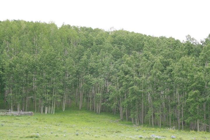 TBD QUAKEY, Telluride, CO 81435