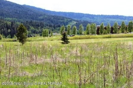 44 RAMMELL RD, Victor, ID 83455