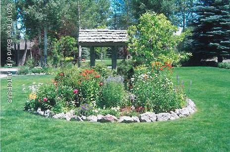 yard in bloom