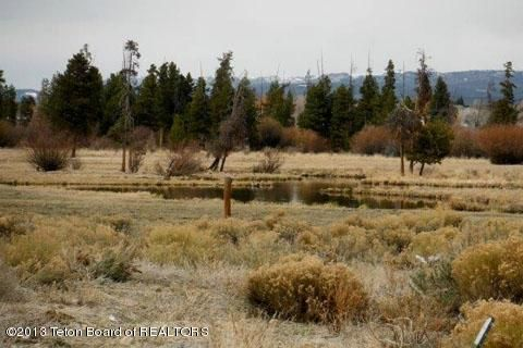 LOT 4 FOX WILLOW DRIVE ST, Pinedale, WY 82941