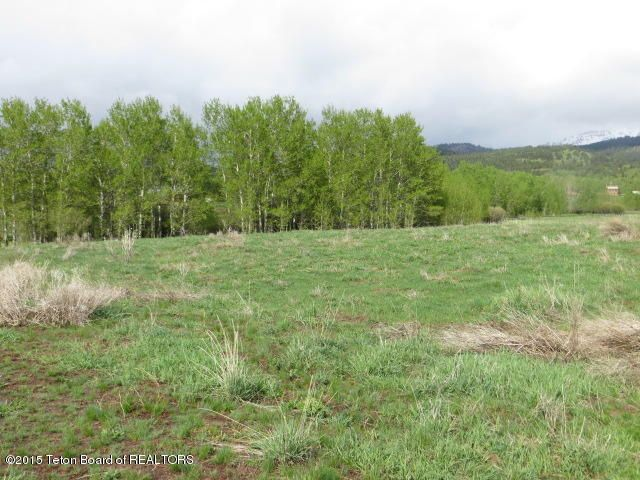 45 E PAINTED ROCK WAY, Alta, WY 83414