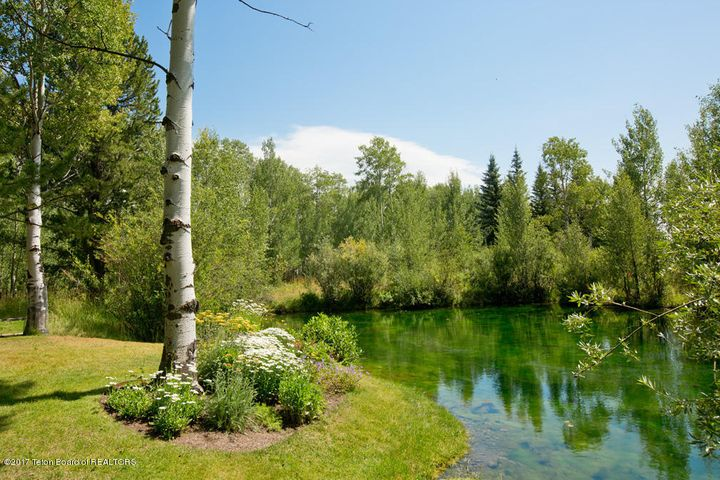 16 Pond + Flowers
