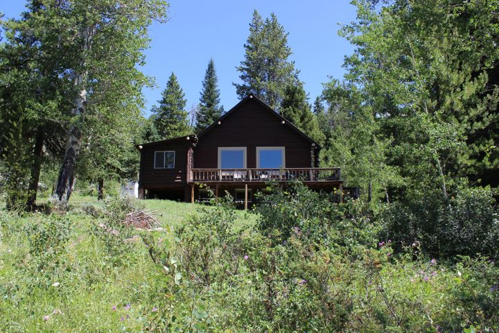Front of Cabin with Trees