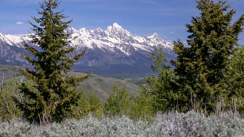 975 SADDLE BUTTE DRIVE  <br>Jackson, WY