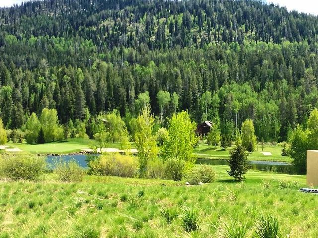 7 WARM CREEK LN <br>Victor, ID