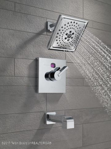 Delta-Shower Option #1