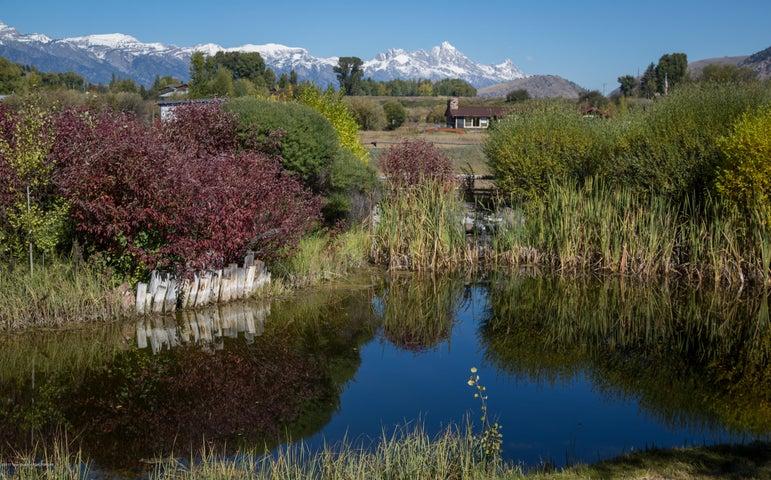 Teton views over pond