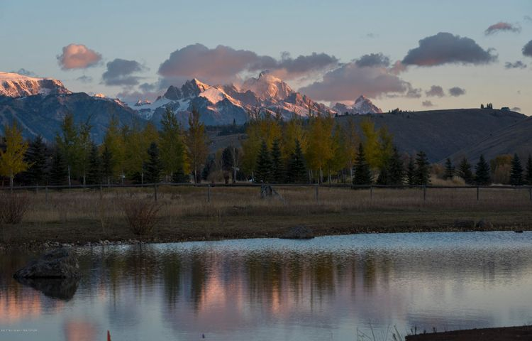 North views w/pond