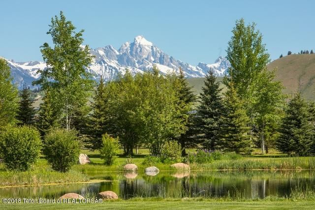 46. Teton view behind pond