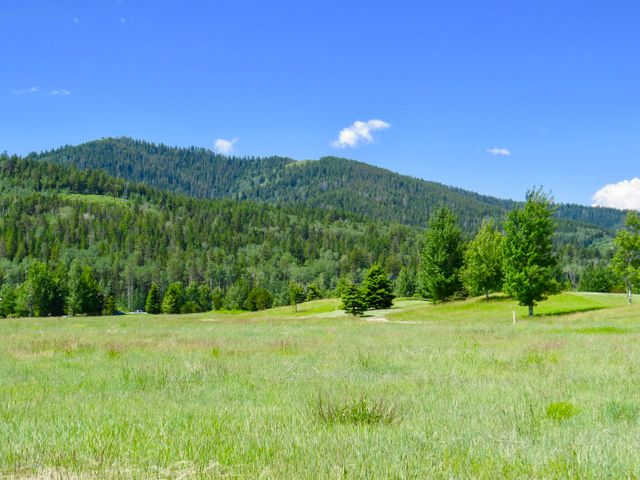 48 RAMMELL RD, Victor, ID 83455
