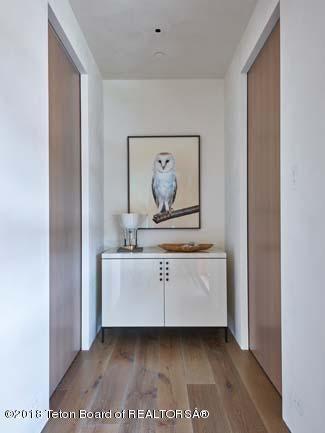 Snowy Owl by Taylor Glenn
