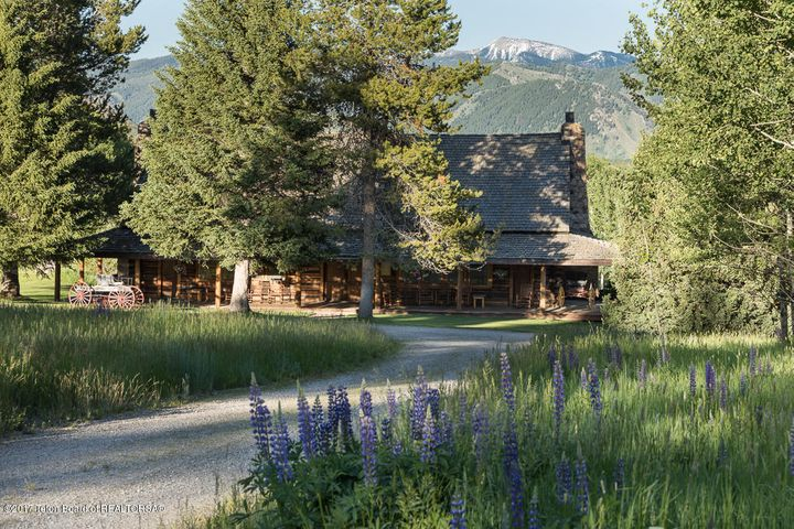 Wildflowers & Mountain View - Lodge