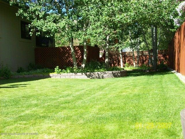 Backyard in the summertime