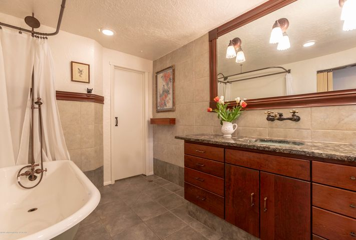 Guest Bath Lower Level