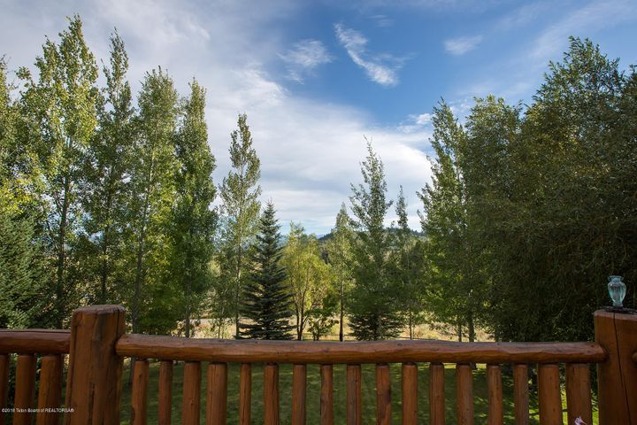 Deck Rail and Trees