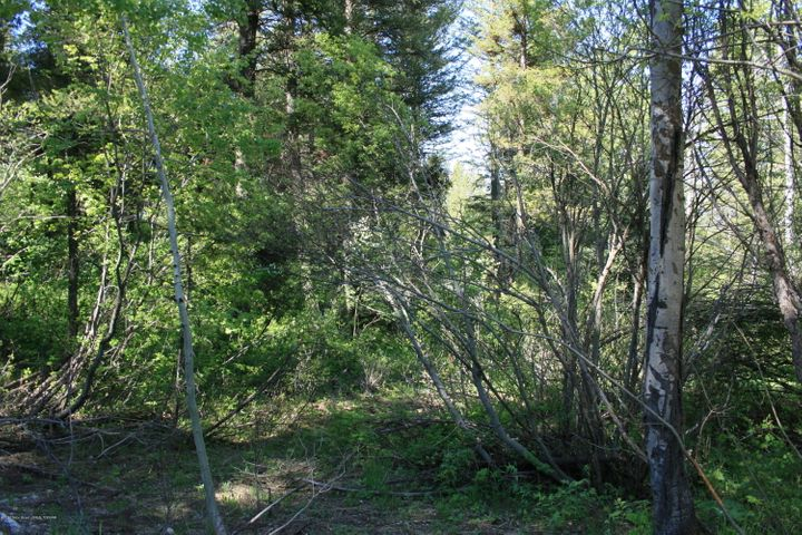 SVR PL8L38 SPURWOOD, Star Valley Ranch, WY 83127