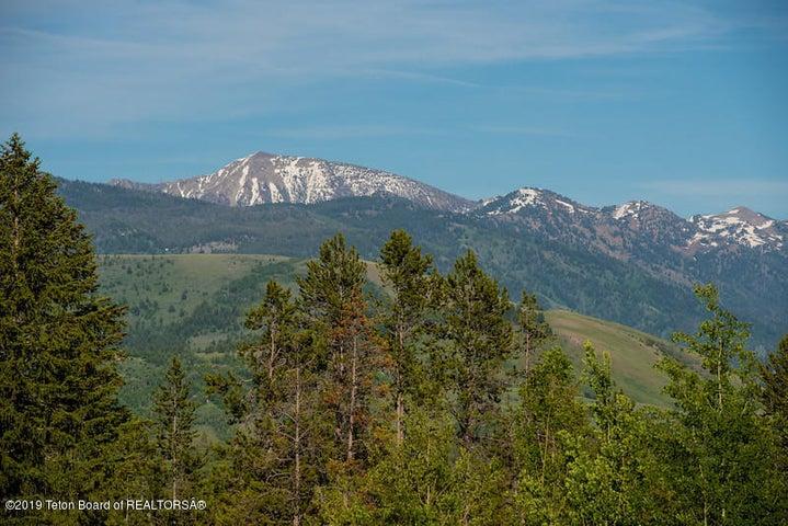 Lewis Jackson Peak from field