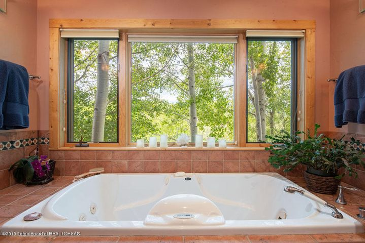 Master Soaking Tub + Treed View