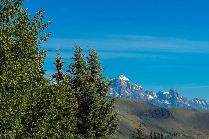 Teton View